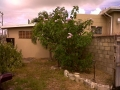 Real Estate -  00 Lodge ROad, Christ Church, Barbados - Back view